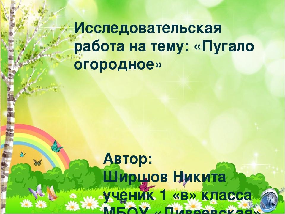 Исследовательская работа на тему: «Пугало огородное» Автор: Ширшов Никита уче...