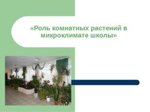 «Роль комнатных растений в микроклимате школы»