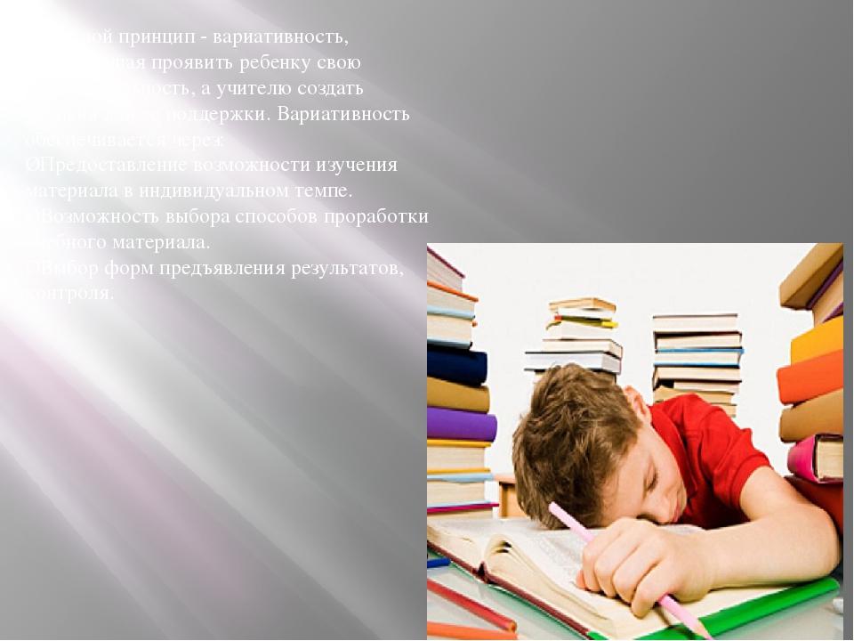 Основной принцип - вариативность, позволяющая проявить ребенку свою индивидуа...