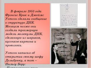 В феврале 1953 года Фрэнсис Крик и Джеймс Уотсон сделали сообщение о структу