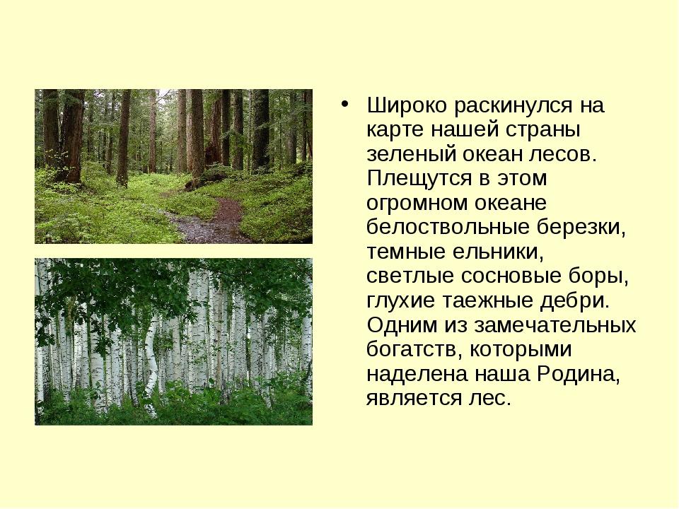 Широко раскинулся на карте нашей страны зеленый океан лесов. Плещутся в этом...