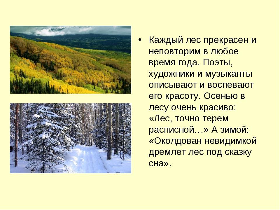 Каждый лес прекрасен и неповторим в любое время года. Поэты, художники и музы...