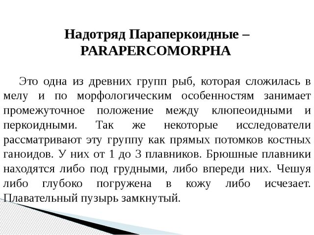 Надотряд Параперкоидные – PARAPERCOMORPHA  Это одна из древних групп рыб, к...