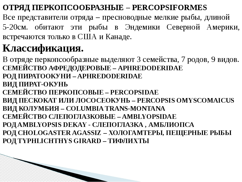 ОТРЯД ПЕРКОПСООБРАЗНЫЕ – PERCOPSIFORMES Все представители отряда – пресноводн...