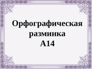 Орфографическая разминка А14