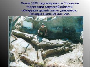 Летом 1999 года впервые в России на территории Амурской области обнаружен цел