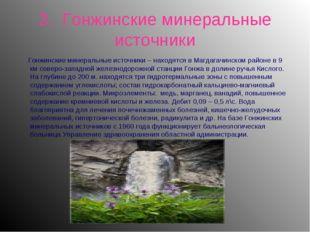 3. Гонжинские минеральные источники Гонжинские минеральные источники – находя