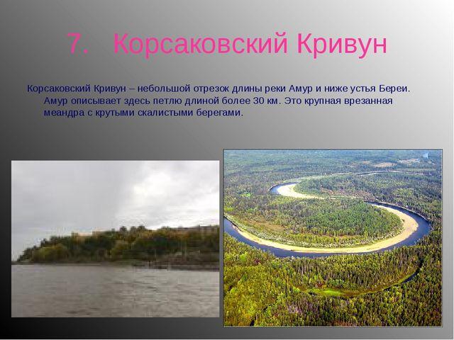 7. Корсаковский Кривун Корсаковский Кривун – небольшой отрезок длины реки Аму...