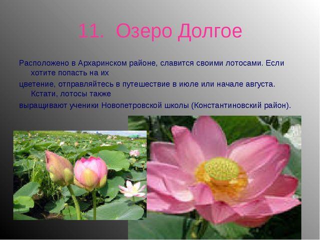 11. Озеро Долгое Расположено в Архаринском районе, славится своими лотосами....
