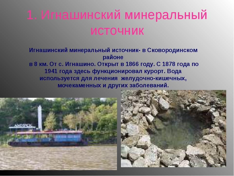 1. Игнашинский минеральный источник Игнашинский минеральный источник- в Сково...