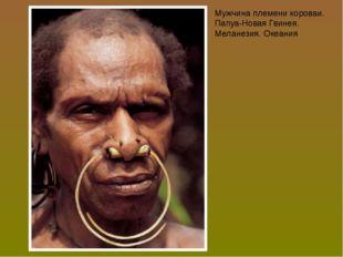 Мужчина племени короваи. Папуа-Новая Гвинея. Меланезия. Океания