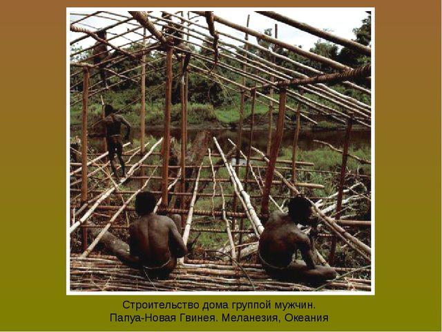 Строительство дома группой мужчин. Папуа-Новая Гвинея. Меланезия, Океания