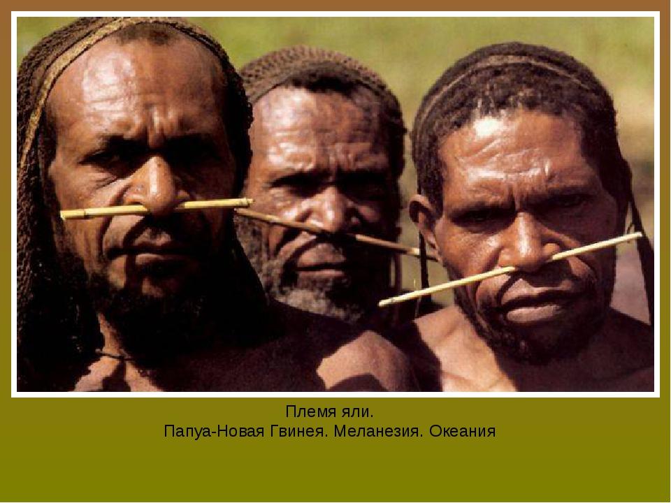 Племя яли. Папуа-Новая Гвинея. Меланезия. Океания