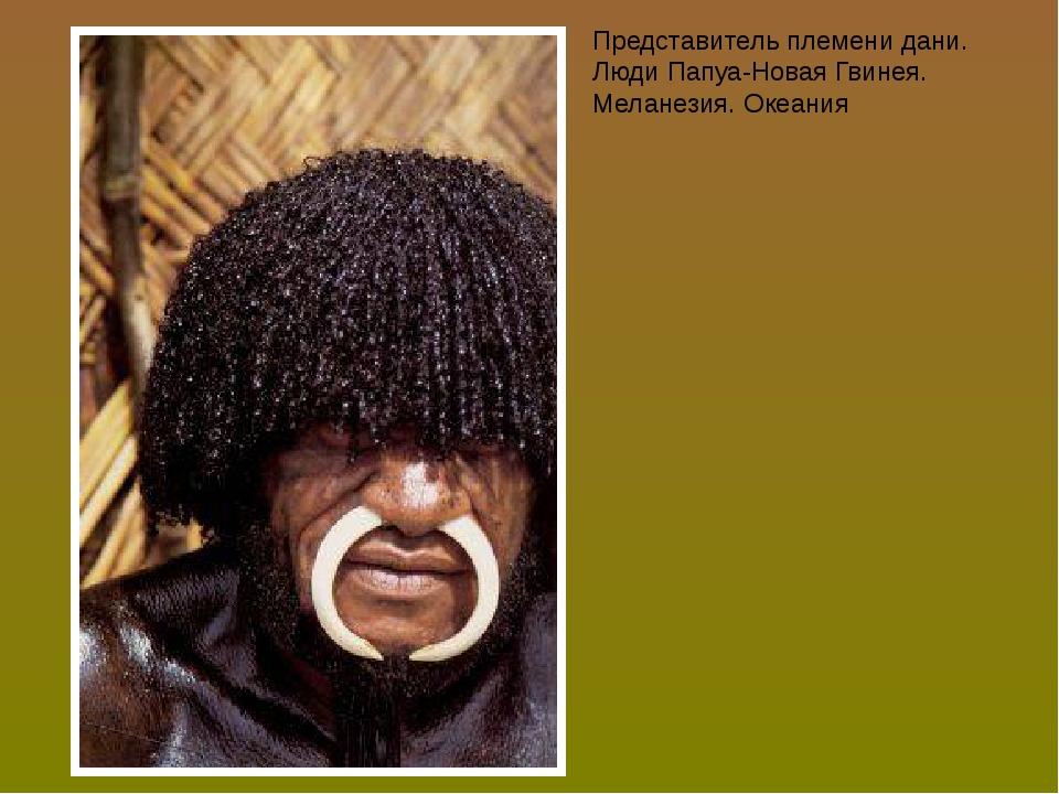 Представитель племени дани. Люди Папуа-Новая Гвинея. Меланезия. Океания