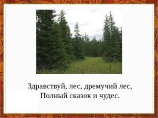 Здравствуй, лес, дремучий лес, Полный сказок и чудес.