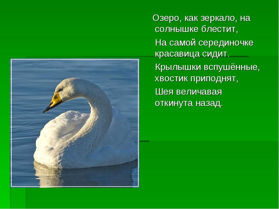 Озеро, как зеркало, на солнышке блестит, На самой серединочке красавица сиди...