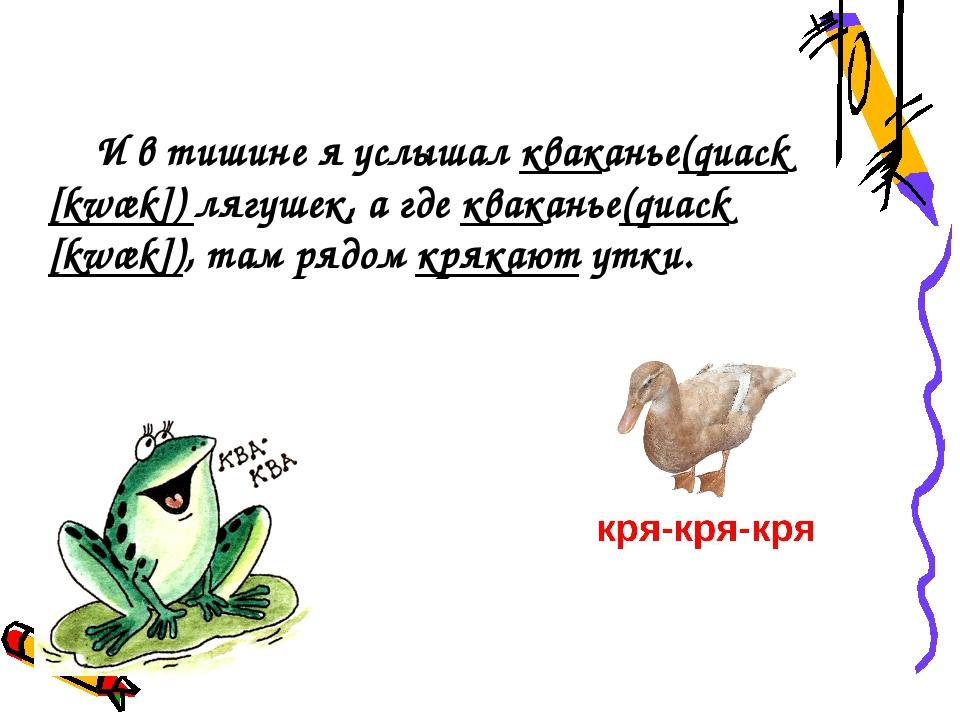 И в тишине я услышал кваканье(quack [kwæk]) лягушек, а где кваканье(quack [k...