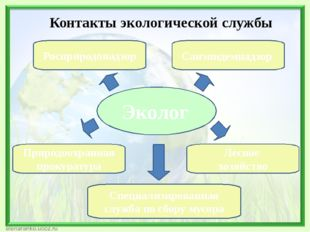 Эколог Росприродонадзор Лесное хозяйство Санэпидемнадзор Природоохранная прок