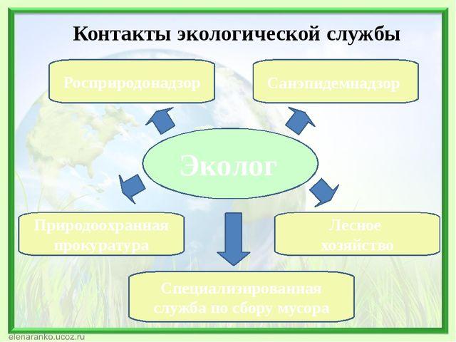 Эколог Росприродонадзор Лесное хозяйство Санэпидемнадзор Природоохранная прок...