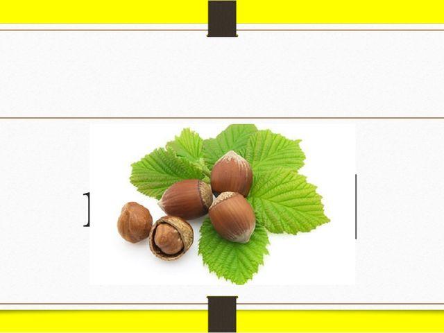 nut [nʌt]