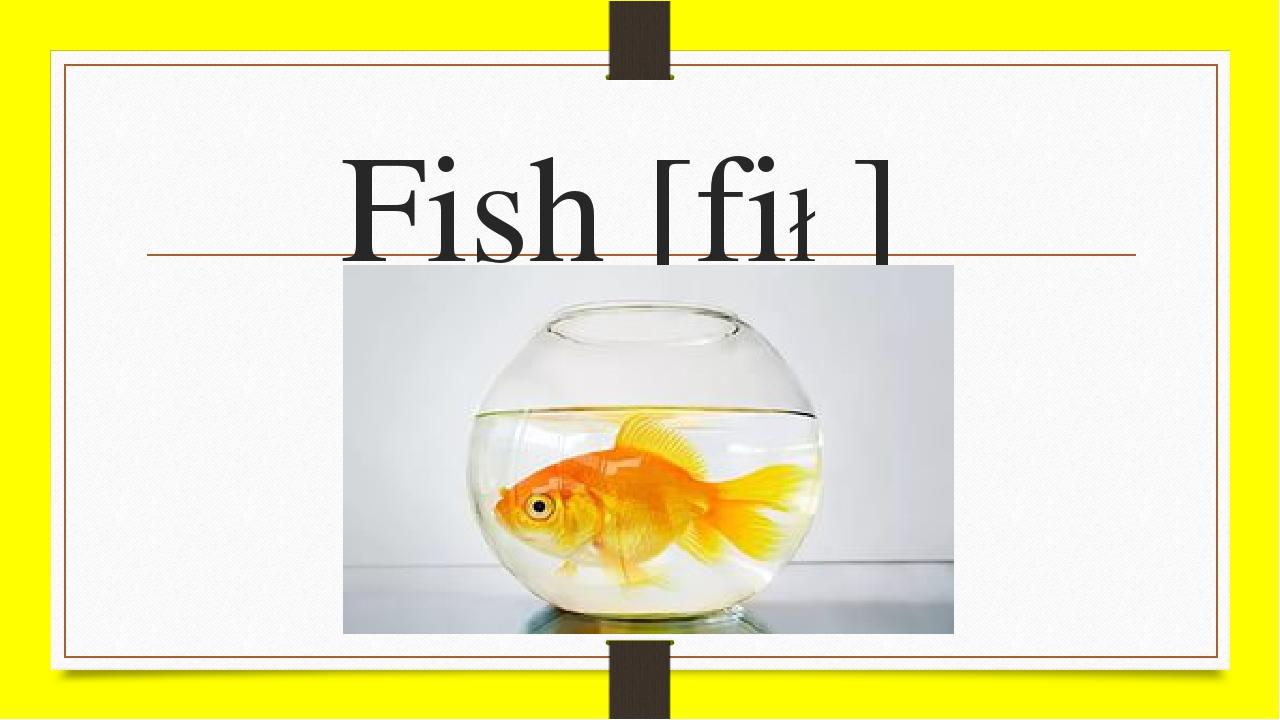 Fish [fi∫]
