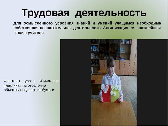 Трудовая деятельность Для осмысленного усвоения знаний и умений учащимся необ...