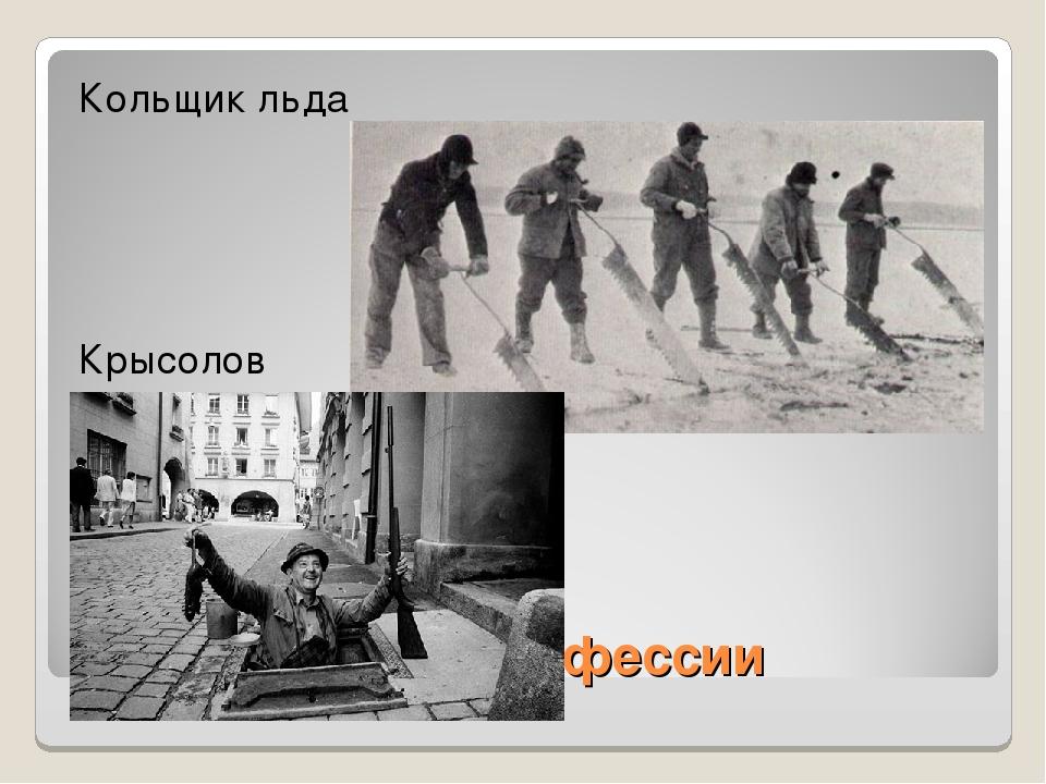 Исччезнувшие профессии Кольщик льда Крысолов