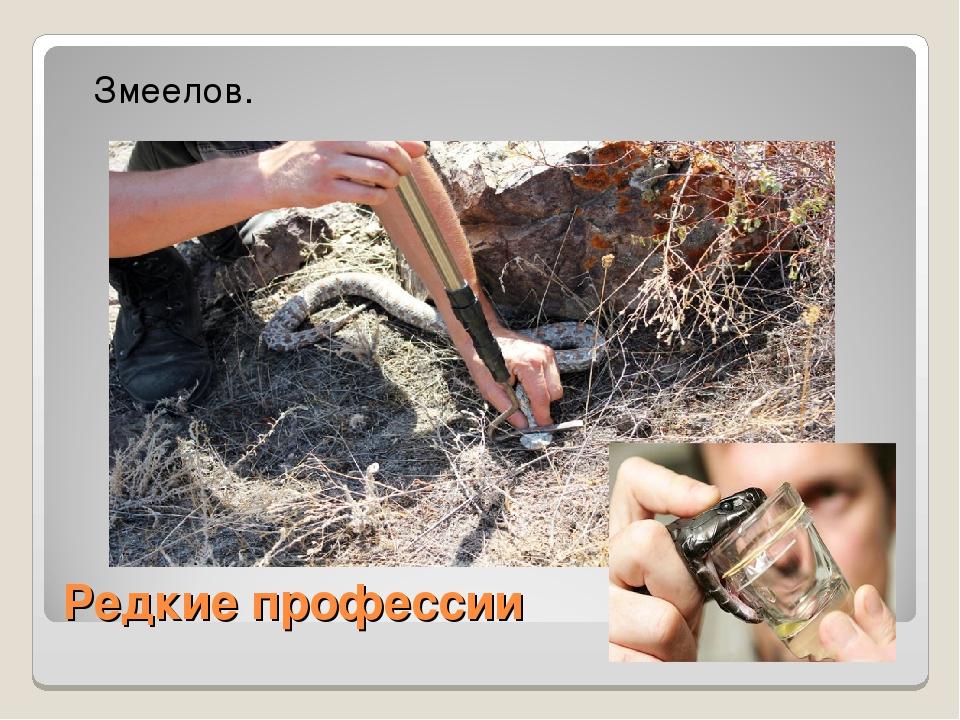 Редкие профессии Змеелов.