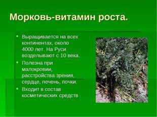 Морковь-витамин роста. Выращивается на всех континентах, около 4000 лет. На Р