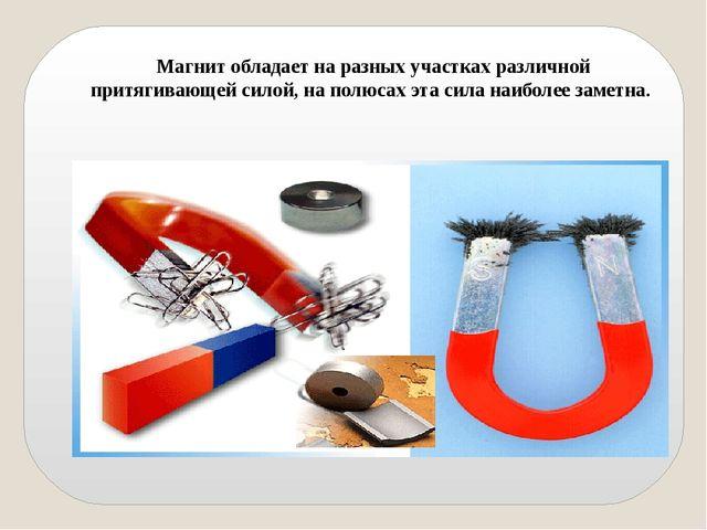 Магнит обладает на разных участках различной притягивающей силой, на полюсах...