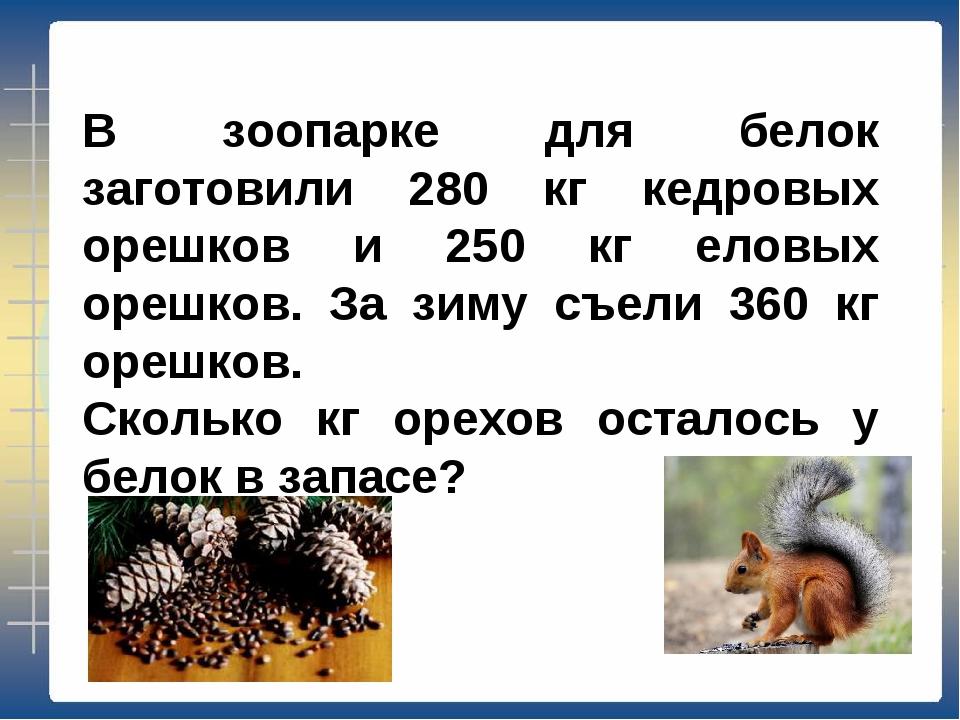 В зоопарке для белок заготовили 280 кг кедровых орешков и 250 кг еловых орешк...