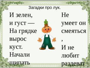 Загадки про лук. И зелен, и густ — На грядке вырос куст. Начали щипать — Стал
