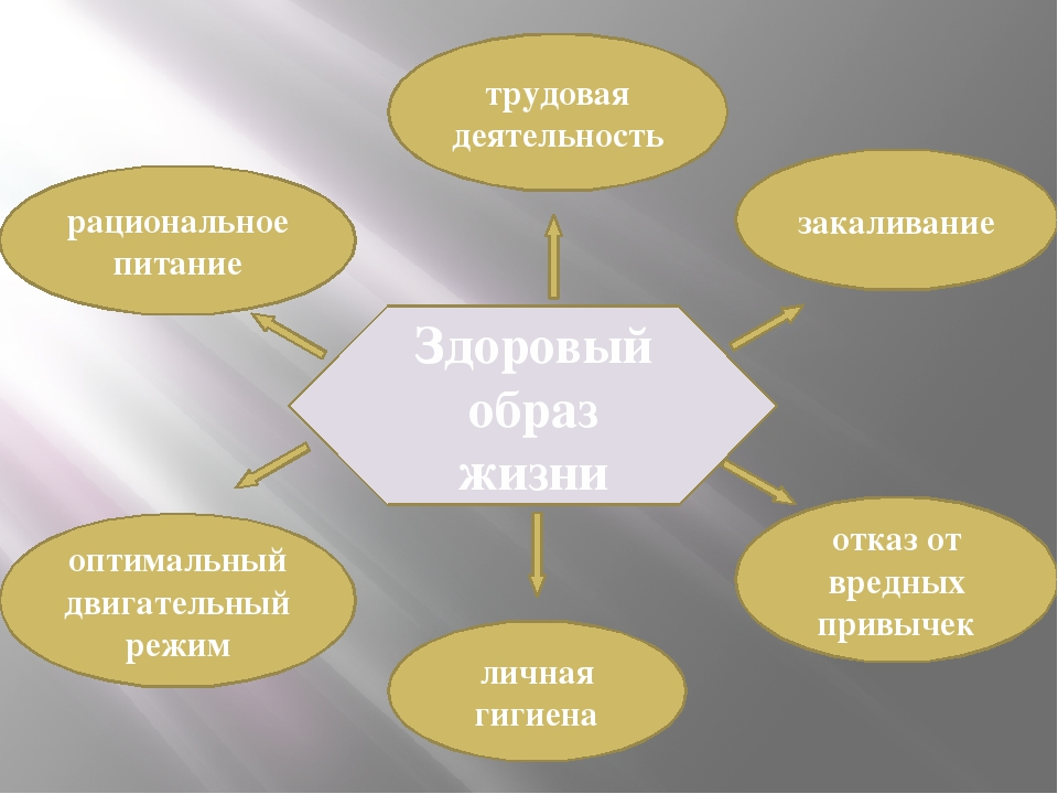 Здоровый образ жизни трудовая деятельность оптимальный двигательный режим зак...