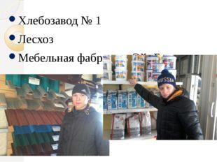 Хлебозавод № 1 Хлебозавод № 1 Лесхоз Мебельная фабрика: «Эй- Би»