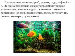 В аквариумах содержат рыб, улиток, гидр, дафний и т. п. На примерах разных а