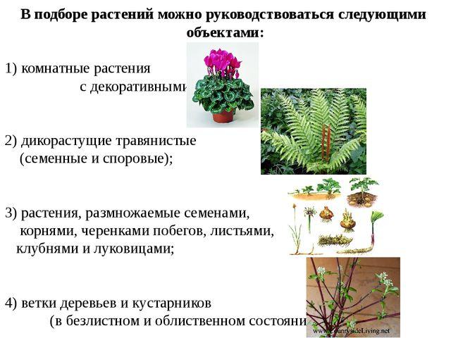 В подборе растений можно руководствоваться следующими объектами: 1) комнатные...