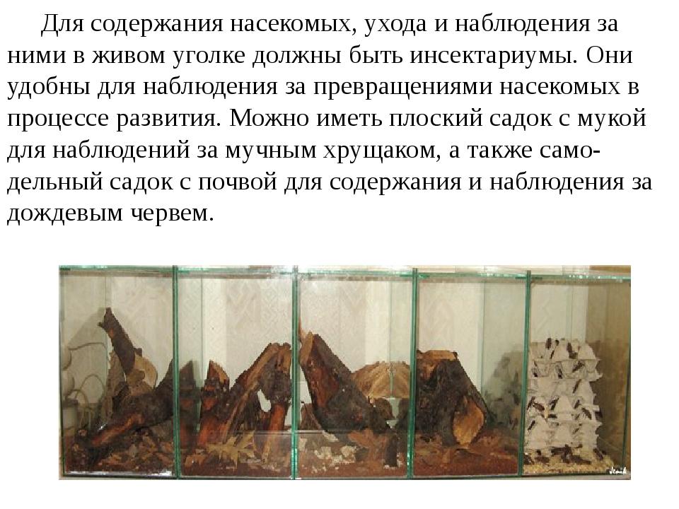 Для содержания насекомых, ухода и наблюдения за ними в живом уголке должны б...