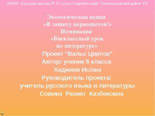 МБОУ «Средняя школы № 11» аула Старобжегокай Тахтамукайский район РА Экологич