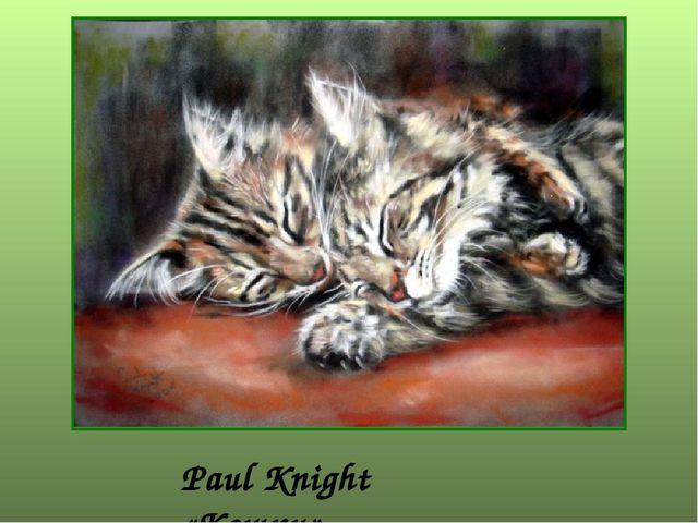 Paul Knight «Кошки»