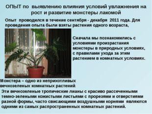 Опыт проводился в течение сентября - декабря 2011 года. Для проведения опыта