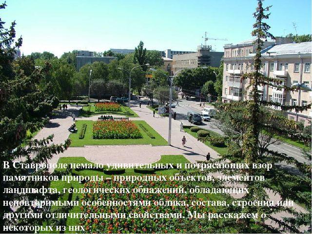 В Ставрополе немало удивительных и потрясающих взор памятников природы – прир...