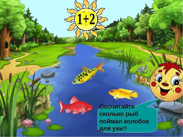 Сосчитайте сколько рыб поймал колобок для ухи?