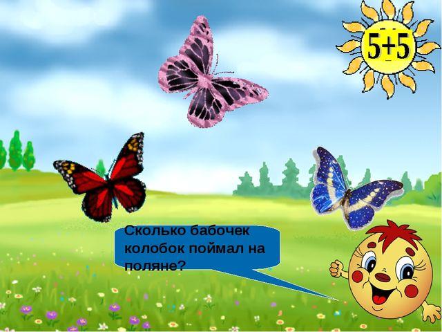 Сколько бабочек колобок поймал на поляне?