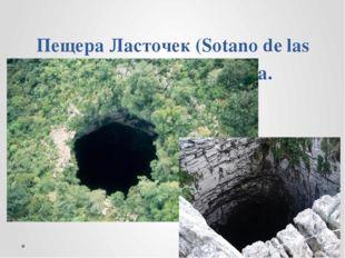 Пещера Ласточек (Sotano de las Golondrinas). Мексика.