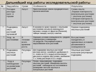 Дальнейший ход работы исследовательской работы № Вид работы Сроки Особенности