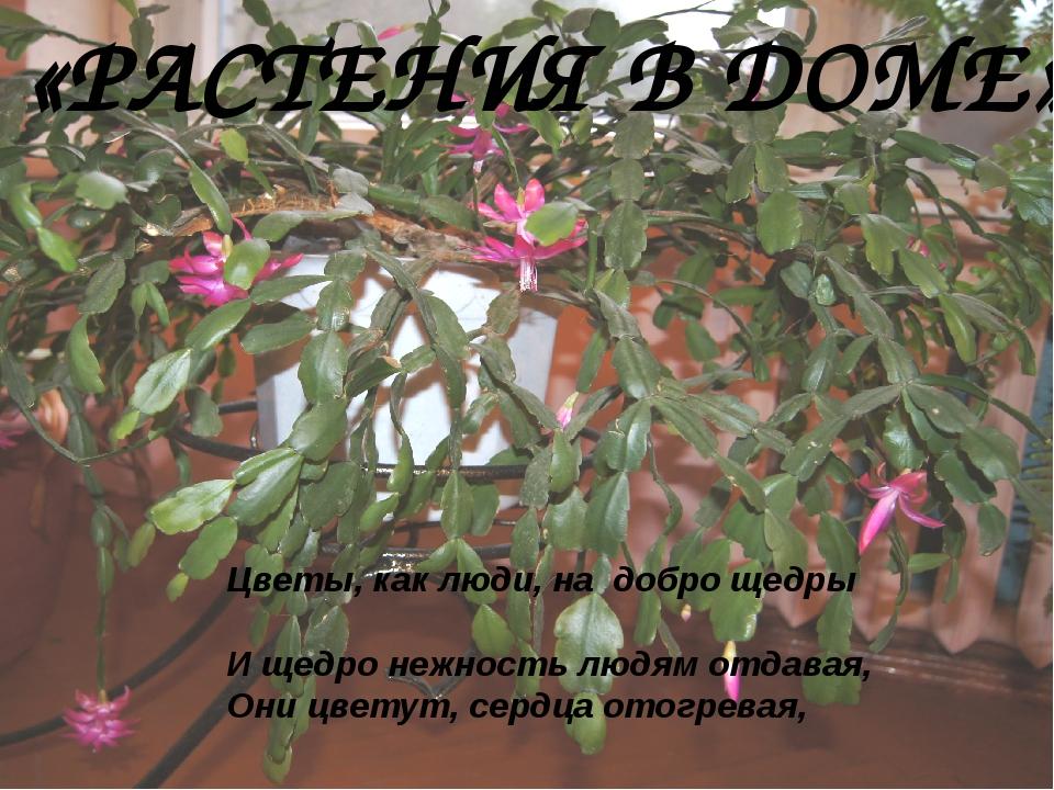 «РАСТЕНИЯ В ДОМЕ» Цветы, как люди, на добро щедры И щедро нежность людям отда...