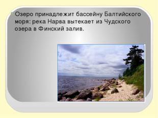 Озеро принадлежит бассейну Балтийского моря: рекаНарвавытекает из Чудского