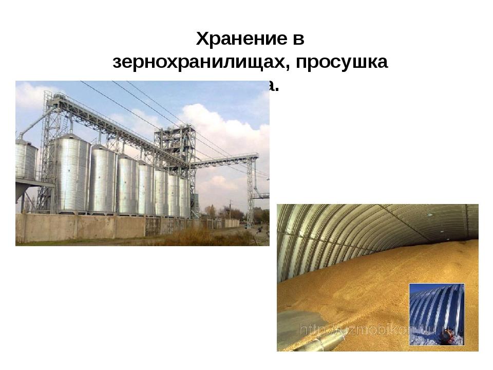 Хранение в зернохранилищах, просушка зерна.