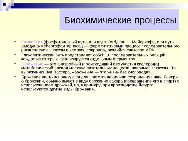 Биохимические процессы Глико́лиз (фосфотриозный путь, или шунт Эмбдена — Мейе...