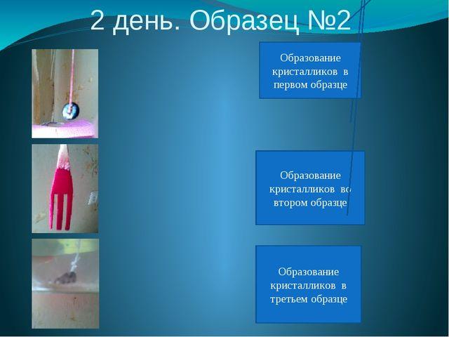 2 день. Образец №2 Образование кристалликов во втором образце Образование кри...